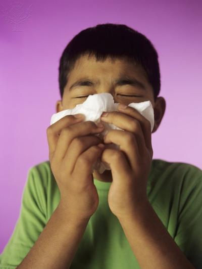 photo of a boy sneezing into tissue
